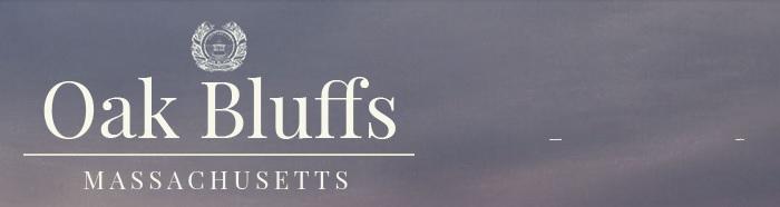 bluffstop